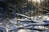 Зимнее Подмосковье