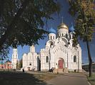 Вид на Николо-Угрешский монастырь