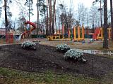 Ежики в парке