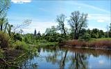 Река близ Клина